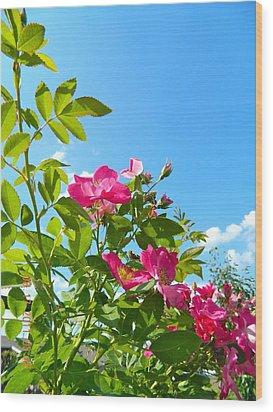 Skyward Roses Wood Print by Randy Rosenberger