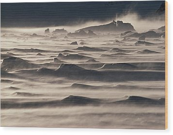 Snow Drift Over Winter Sea Ice Wood Print by Antarctica