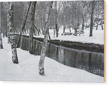 Snowy Park Wood Print by Carlos Caetano