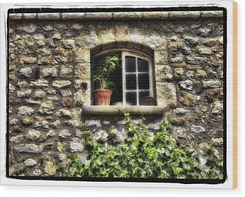 South Of France 2 Wood Print by Mauro Celotti