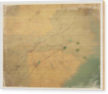 Southeast Us Wood Print by Paulette B Wright