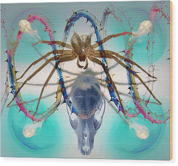 Spider Dna Wood Print by Adam Long