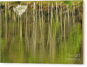 Spring Morning Reflections Wood Print by Thomas R Fletcher