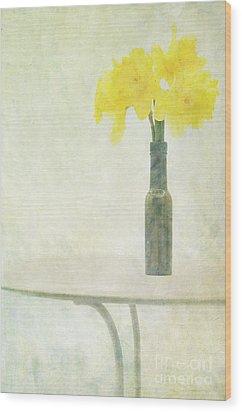 Springtime Wood Print by Marion Galt