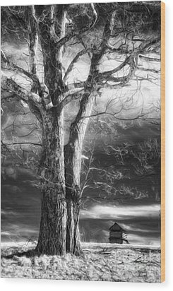 Standing Guard II Wood Print by Dan Carmichael