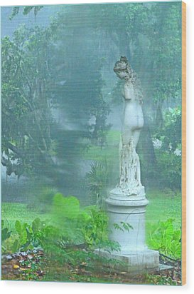 Standing In The Rain Wood Print by Mindy Newman