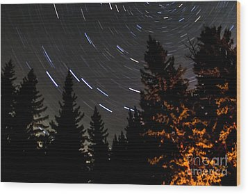 Star Trails Above Spruce Tree Line Wood Print by Darcy Michaelchuk