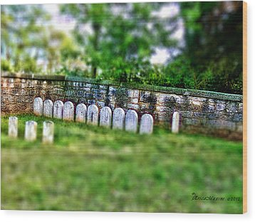 Stones River Battlefield Wood Print by EricaMaxine  Price