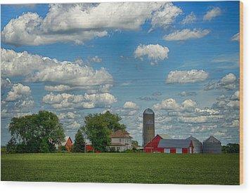 Summer Iowa Farm Wood Print by Bill Tiepelman
