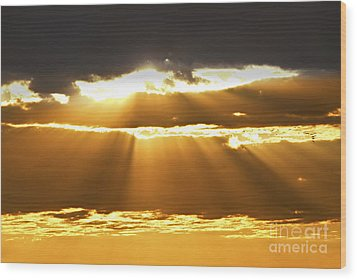 Sun Rays At Sunset Sky Wood Print by Elena Elisseeva