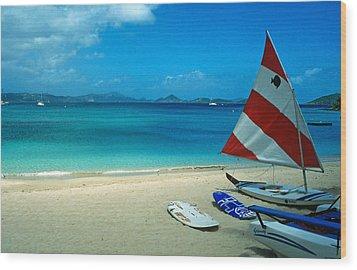 Sunfish On The Beach Wood Print by Kathy Yates