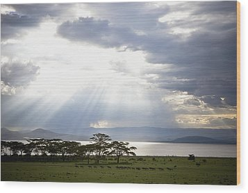 Sunlight Shines Down Through The Clouds Wood Print by David DuChemin