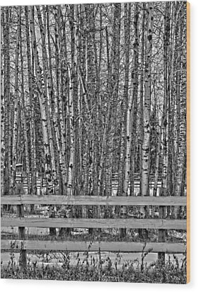 Susys Ranch  Wood Print by Jerry Cordeiro