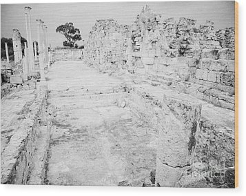 Swimming Pools In The Gymnasium And Baths In The Ancient Site Of Old Roman Villa Salamis Wood Print by Joe Fox
