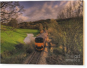 Taw Valley Wood Print by Rob Hawkins