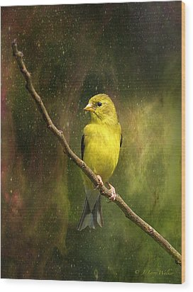 The Beauty Of Youth Wood Print by J Larry Walker