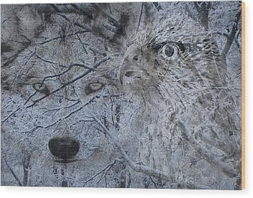 The Forest Has Eyes Wood Print by Yvonne Scott