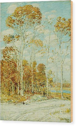 The Hawk's Nest Wood Print by Childe Hassam