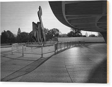 The Hirshhorn Museum II Wood Print by Steven Ainsworth