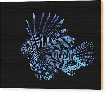 The Lionfish 3 Wood Print by Robin Hewitt