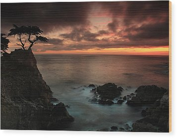 The Lone Cypress Observes A Pebble Beach Sunset Wood Print by Dave Storym