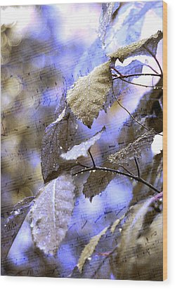 The Melody Of The Silver Rain Wood Print by Jenny Rainbow