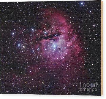 The Pacman Nebula Wood Print by Robert Gendler