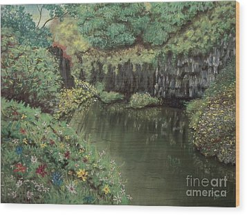 The Pond Wood Print by Jim Barber Hove