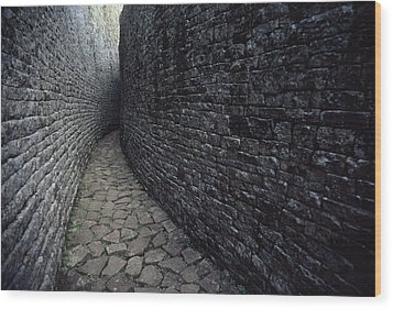The Ruins Of Great Zimbabwe Were Built Wood Print by James L. Stanfield