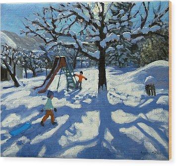 The Slide In Winter Wood Print by Andrew Macara
