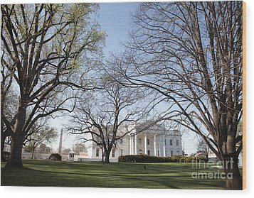 The White House And Lawns Wood Print by Neil Overy