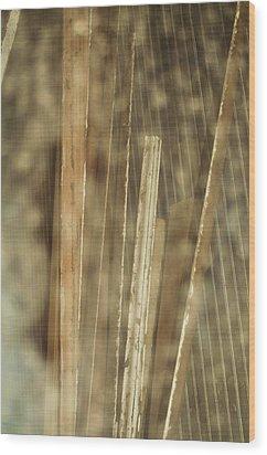 Thin Veil Wood Print by Todd Sherlock