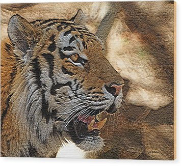 Tiger De Wood Print by Ernie Echols