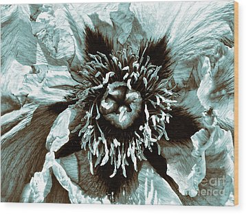 Toned Floral Print Wood Print by Jeff Breiman