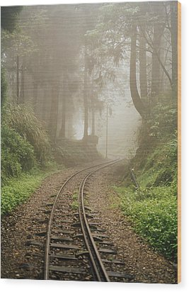 Train Tracks Found On The Forest Floor Wood Print by Justin Guariglia