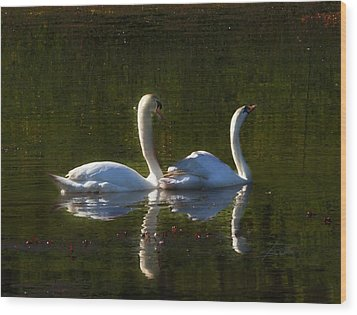 Tranquility Wood Print by Barbara  White