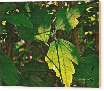 Transparent Glow IIi Wood Print by Rotaunja