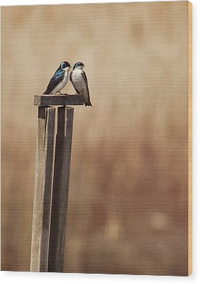 Tree Swallows On Wood Post Wood Print by Jody Trappe Photography