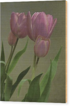Tulips Reflections Wood Print by Debra     Vatalaro
