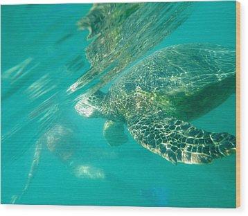 Turtle 8 Wood Print by Erika Swartzkopf