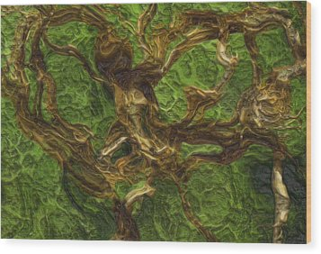 Twisted Wood Print by Jack Zulli