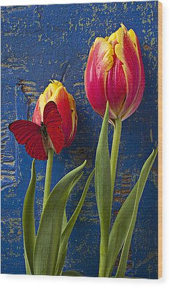 Two Tulips With Red Butterfly Wood Print by Garry Gay