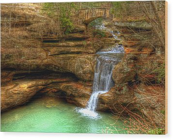 Upper Falls From The Top Wood Print by Shirley Tinkham