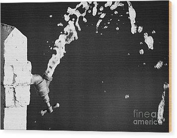 Upside Down Faucet Spraying Water Wood Print by Joe Fox