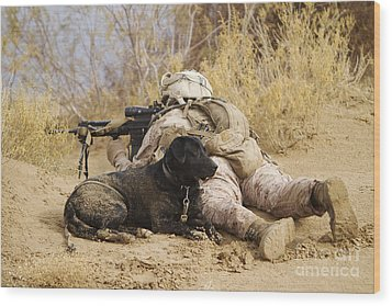 U.s. Marine And A Military Working Dog Wood Print by Stocktrek Images