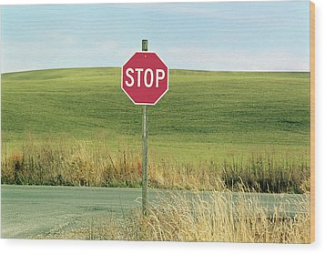 Usa, Washington, Palouse, Stop Sign On Country Road Wood Print by Mel Curtis