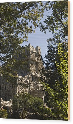 View Of Gillette Castle Wood Print by Todd Gipstein