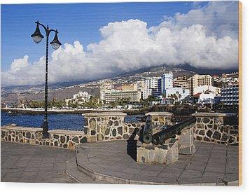View Of Puerto De La Cruz From Plaza De Europa Wood Print by Fabrizio Troiani