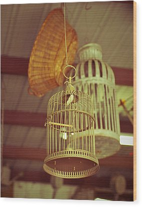 Vintage Birdcages Wood Print by Sonja Quintero