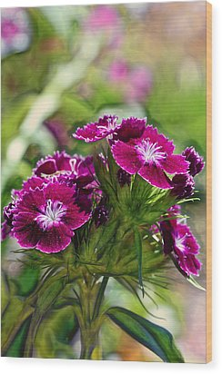 Violet Floral Imressions Wood Print by Bill Tiepelman